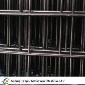 Black Welded Wire Mesh
