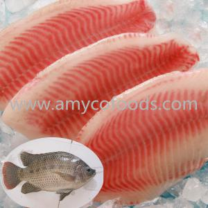 Hight quality tilapia fillet at low price
