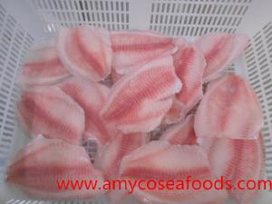 IQF tilapia fillet origin China