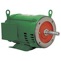 WEG motor