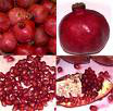 Supply Pomegranate Juice Concentrate-2008 crop - A