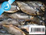 Рыба вяленая от производителя 02 - Плотва вяленая