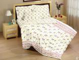 Комплекты постельного белья - Комплект постельного белья 2-х сп. с европростынёй