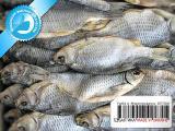 Рыба вяленая от производителя 01 - Густера вяленая