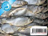 Рыба вяленая от производителя 01 - Тарань вяленая