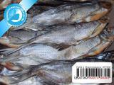Рыба вяленая от производителя 01 - Синец вяленый