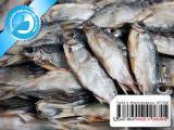 Рыба вяленая от производителя 03 - Вобла вяленая