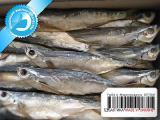 Рыба вяленая от производителя 03 - Чехонь вяленая