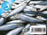 Рыба и морепродукты из Норвегии и Исландии - Сельдь свежемороженая Исландия