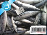 Рыба и морепродукты из Норвегии и Исландии - Скумбрия свежемороженая Норвегия