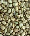 100% Арабика (Камерун) - Зеленый кофе 100% Арабика (Камерун)