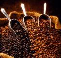 100% Арабика (Камерун) - Кофе Арабика, Робуста (КАМЕРУН)
