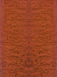 Экзотические породы дерева - Тропические породы дерева - МОАБИ (MOABI)