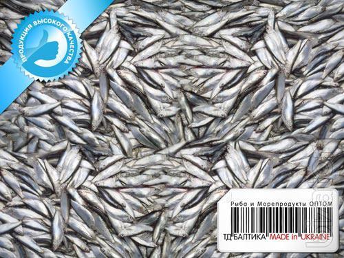 Рыба тюлька купить