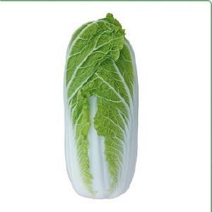 Семена овощей - Семена пекинской капусты KS 374 F1 фирмы Китано
